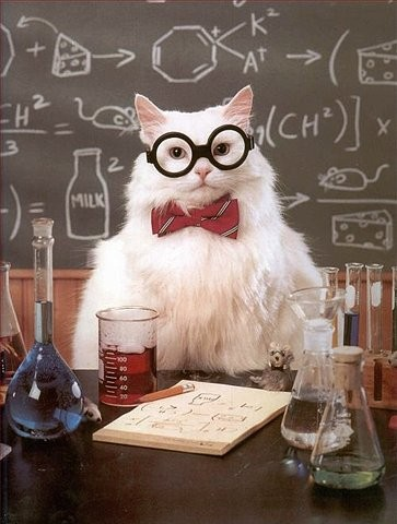 funny_mad_scientist_picture